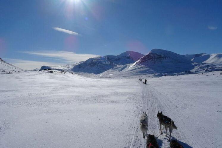 Der Kungsleden ist eine atemberaubend schöne Kulisse für eine Huskytour