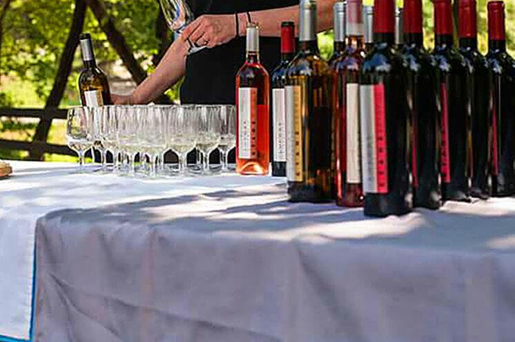 Hier werden Sie diverse griechische Weine verkosten und zu Abend essen.