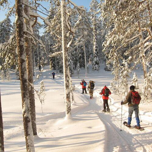 Schneeschuhwandern in Ostfinnland