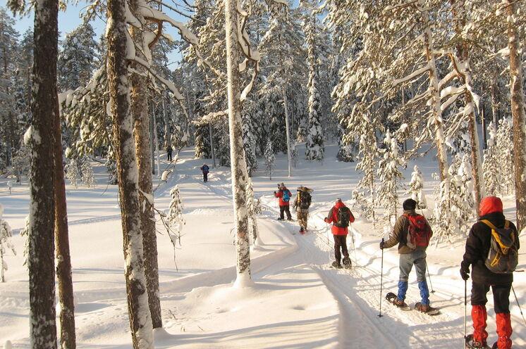 Ostfinnland: ein perfekter Ort, um die friedliche Natur zu genießen