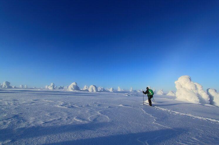 Täglich laufen Sie ca. 20 km querfeldein mit den Ski