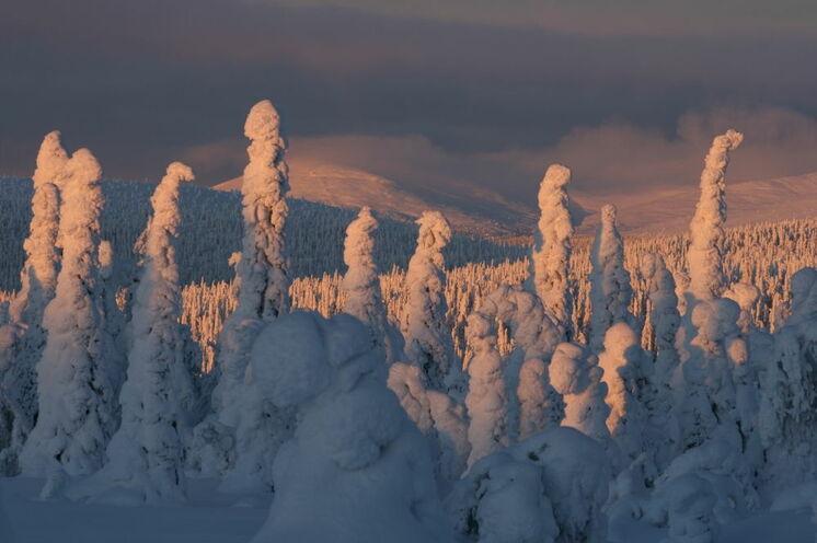 """Im """"Herzwinter"""" von Lappland erlebt man die schönsten Schneelandschaften des Winters"""