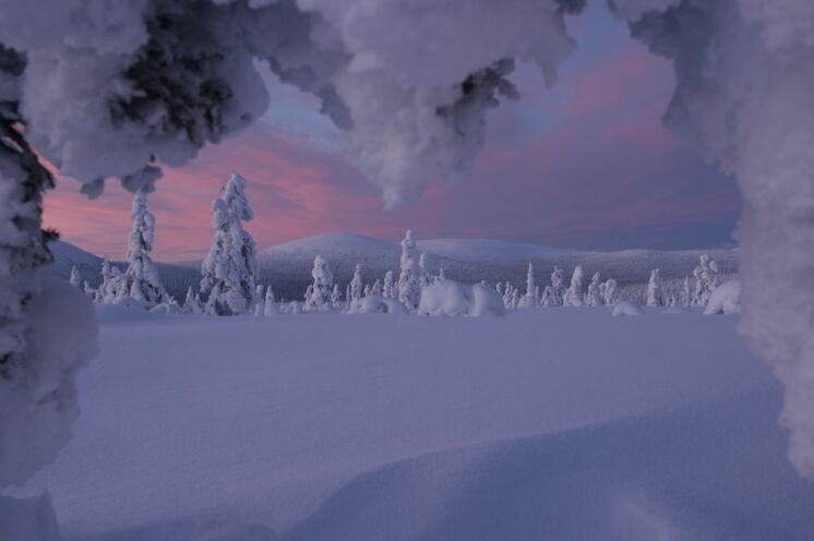 Typisch in dieser Zeit des Winters ist die rote Färbung des Himmels