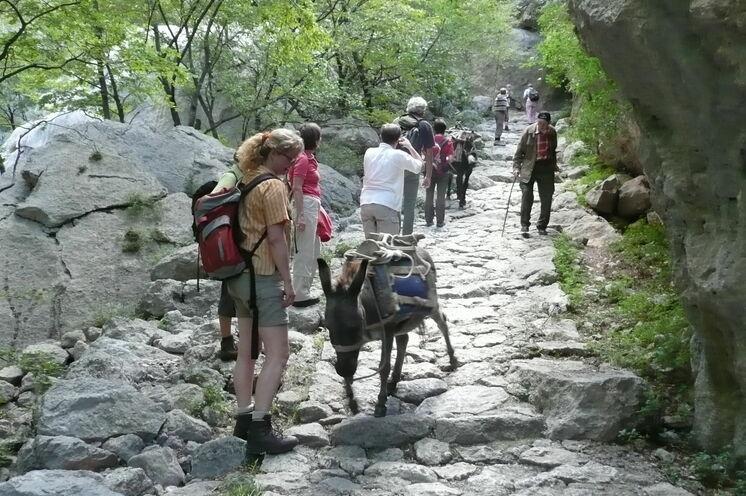 Begegnung mit einem Bauern mit Transport-Esel beim Anstieg ins Paklenica-Gebirge.