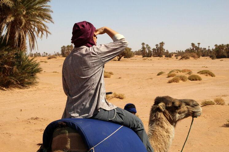 Anschließend geht es für einige Tage in die Wüste. Auf dem Rücken von Kamelen erkunden Sie die Sahara.