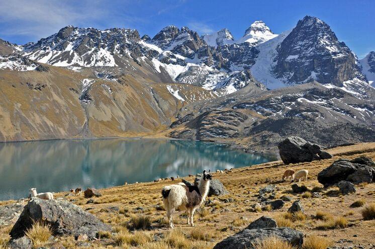 An der Lagune Chiar Khota (4650 m) genießen Sie die Ausblicke auf die Condoriri-Gletscher