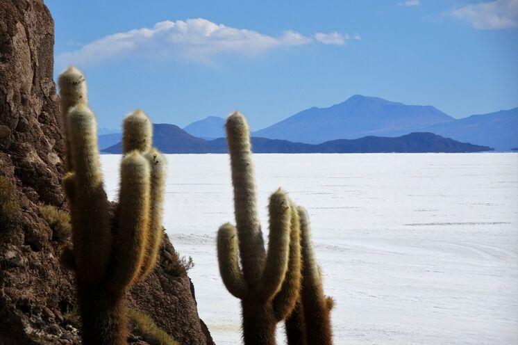 Der größte Salzsee der Welt, der Salar de Uyuni gehört zu den absoluten Höhepunkten einer jeden Bolivien-Reise
