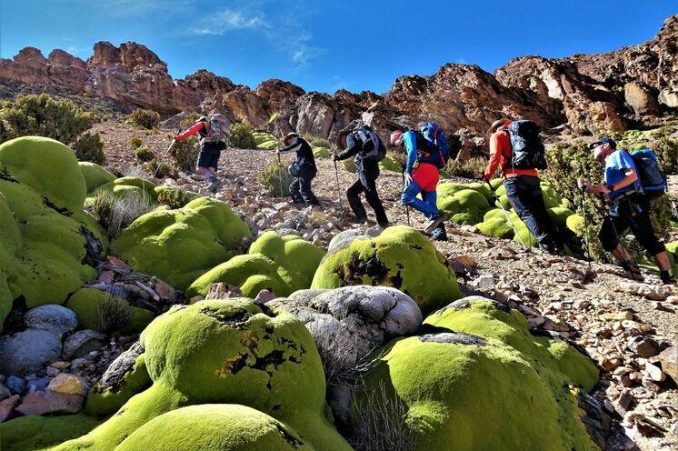 Der Aufstieg zum Vulkan fällt Ihnen durch vorangehende Akklimatisierung