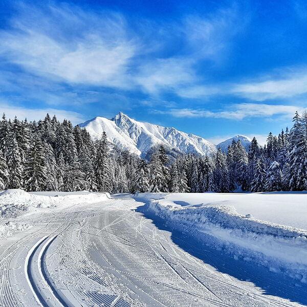 Skilanglaufcamp in Leutasch/Seefeld mit Schnupper-Laser-Biathlon