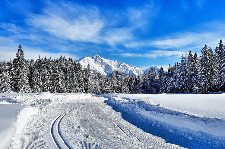 Die Skilanglaufcamps finden in einer atemberaubenden Naturkulisse statt