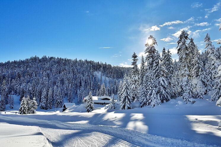 Von Leutasch aus sind es nur wenige Skilanglaufkilometer bis nach Seefeld, dem Austragungsort der Nordischen Ski WM 2019