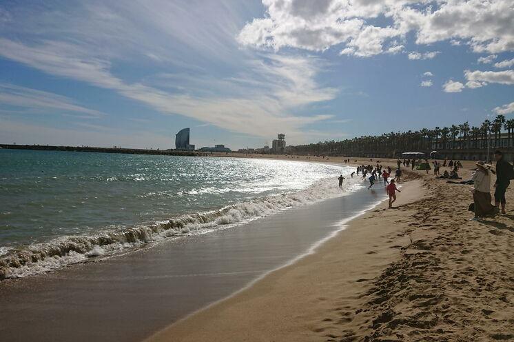 Unweit des Zentrums befinden sich die schönen Strände und die palmengesäumte Uferpromenade...