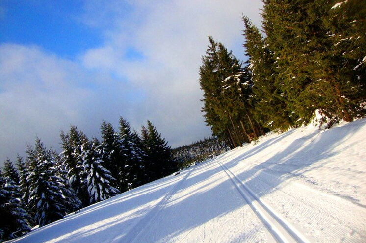 Die Strecke führt wahlweise über 30 oder 15 km im klassischen oder 15 km im freien Stil auf einem Rundkurs rund um die DKB Ski Arena Oberhof.