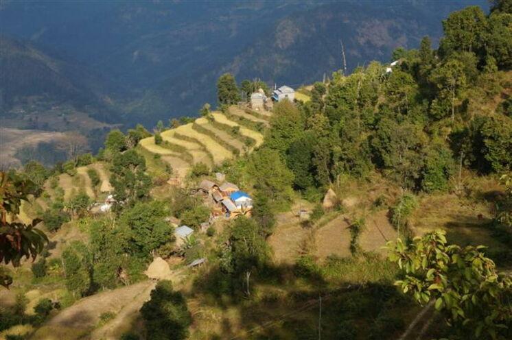 Sie durchwandern malerische Gurungdörfer.