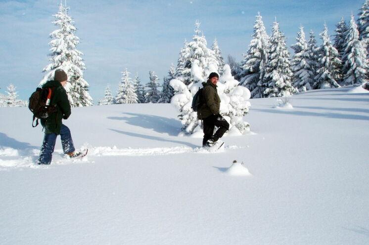Auf Schneeschuhen durch die zauberhafte Winterlandschaft der Mala Fatra - Ihr Reiseleiter legt als Erster die Spur