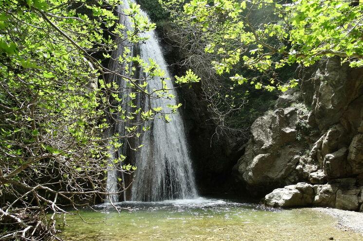 Im kretischen Dschungel, kaum zu glauben, welch Naturschätze Kreta zu bieten hat.