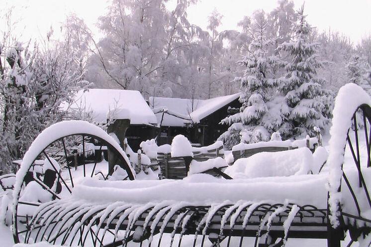 Eine dicke Schneedecke, die das Gelände der Mufflonhütte verzaubert, gibt's leider nicht immer ...