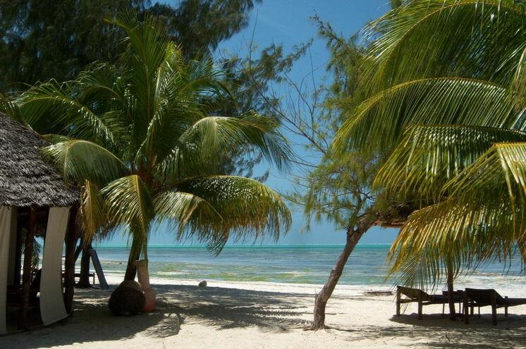Verlängern Sie noch einige Tage am Strand von Sansibar - beispielsweise in der Bahari View Lodge