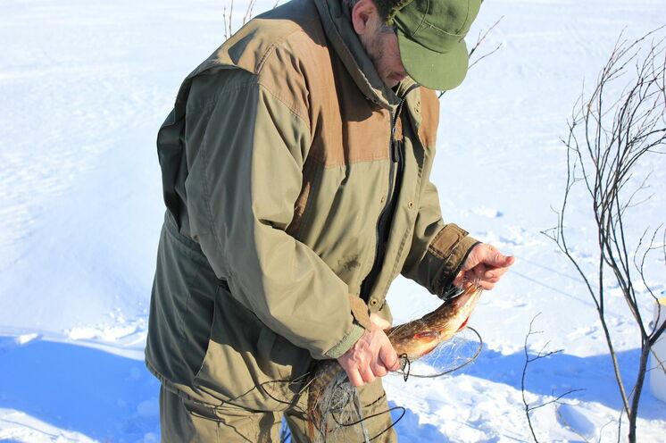 Ein waschechter Finne zeigt Ihnen während unseres Ausfluges wie Eisangeln richtig funktioniert.