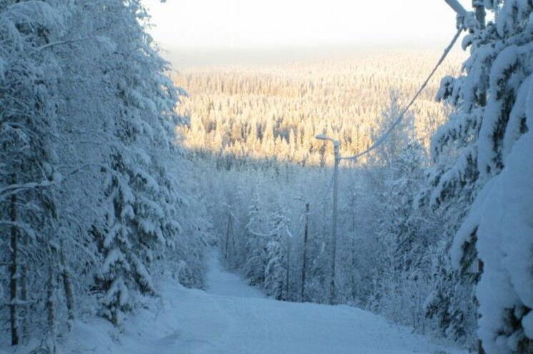Loipen-Landschaft um Vuokatti - der Höhenunterschied beträgt bis zu 120 m...(!)