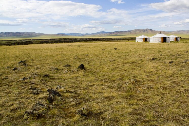Die mongolische Jurte (Ger) hat sich über Jahrhunderte als Unterkunft im rauen Klima bewährt. Innerhalb weniger Stunden kann diese auf- und abgebaut werden.