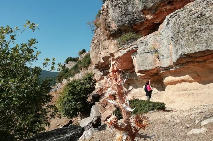 Wanderung am Tafelberg auf Paulus´Spuren