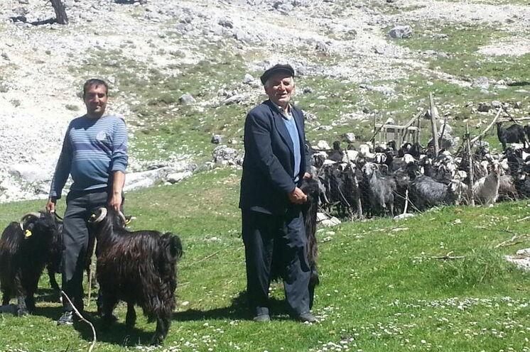 Begegnungen am Drachenberg mit einen Ziegenhirten