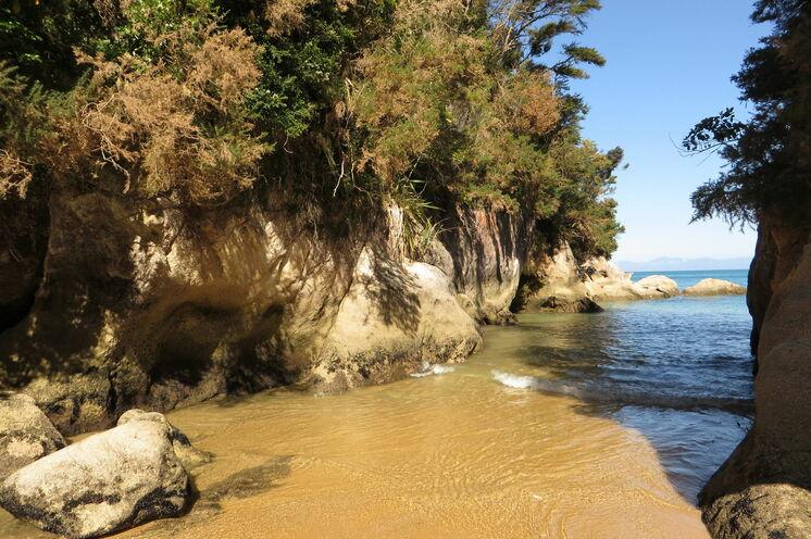 Der Abel Tasman Nationalpark lockt mit goldenen Stränden und verschwiegenen Badebuchten.