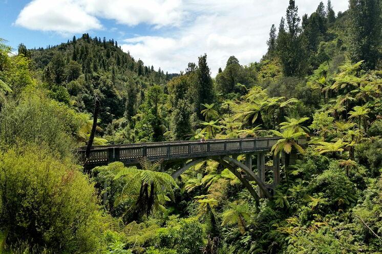 """Die legendäre """"Bridge to Nowhere"""" im Wanganui-Nationalpark entdecken Sie bei einer kleinen Wanderung. Hier verbringen Sie eine Nacht in der Lodge."""