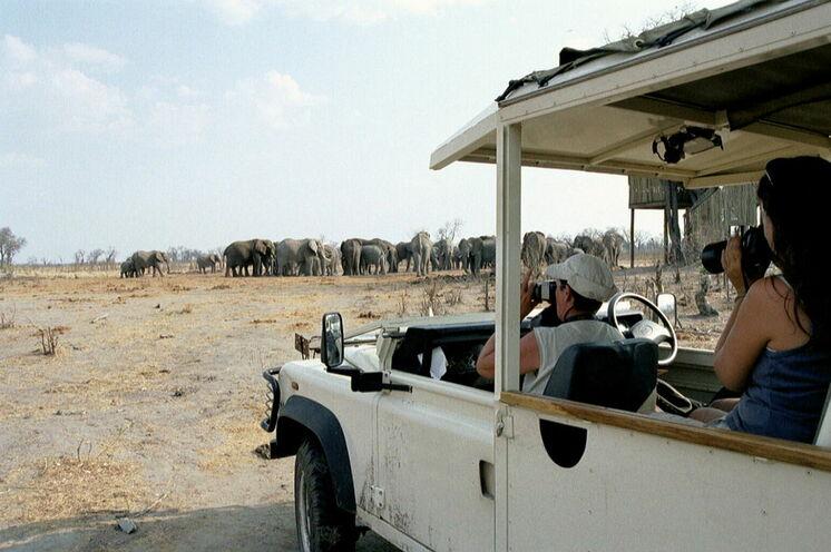 ... und im Safari-Fahrzeug.