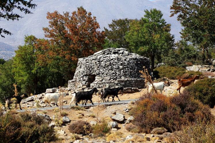 Die Ida-Region ist Heimat der Ziegenhirten.