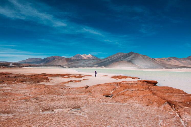 Die trockenste Wüste der Welt überrascht mit Abwechslung: Mondlanschaften und Salzseen, Flamingos, Oasen und heiße Quellen zum Baden