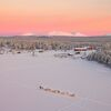 Erlebniswoche im  Winterdorf in Finnisch-Lappland