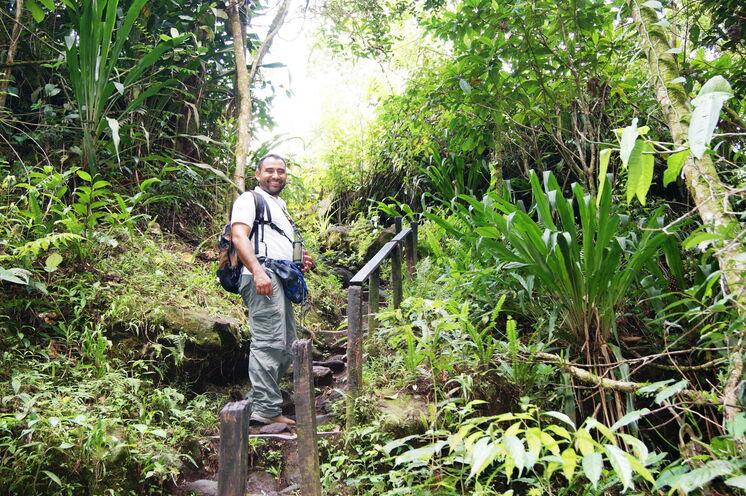 Mit Ihrem naturkundlich hervorragend ausgebildeten Guide durchstreifen Sie den Regenwald und entdecken Sie allerhand Spannendes!