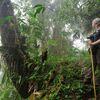 Trekking, Regenwälder und Vulkane