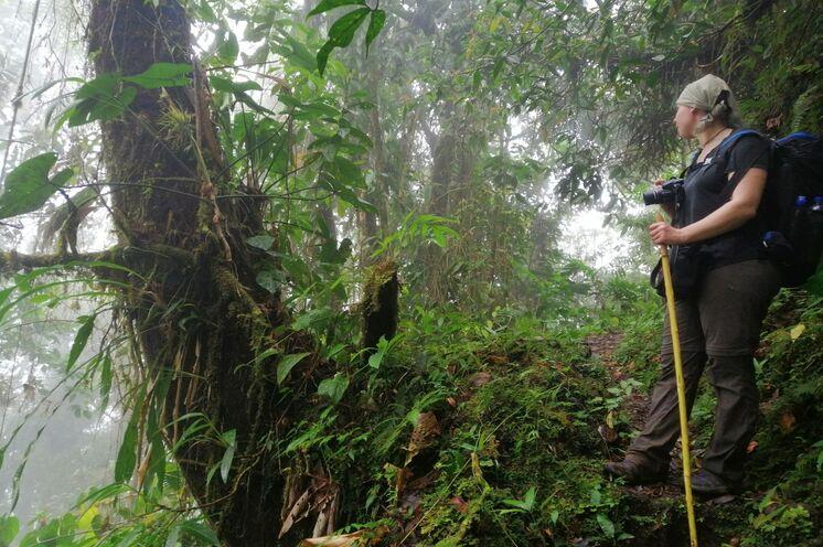 Unterwegs auf der Sukia- und Quetzalroute ...