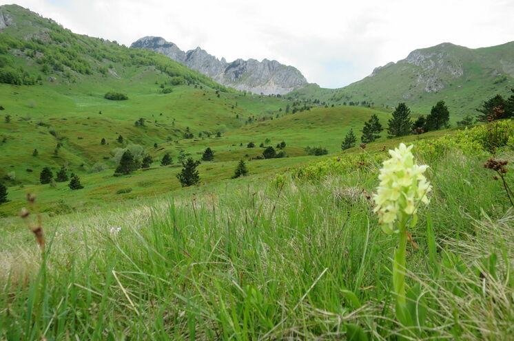 Natur Pur in den Bergen von Bosnien-Herzegowina