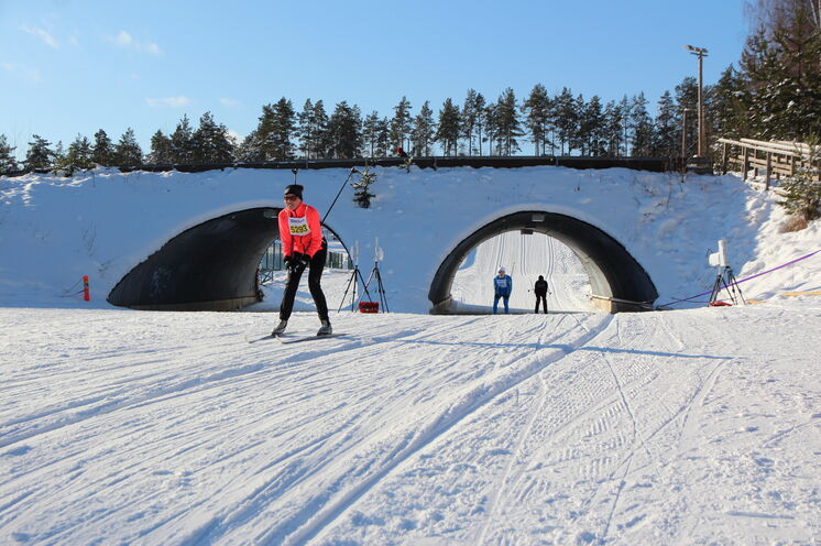 Finlandia: Kurz vor Schluß erwartet die Skimarathonis eine rasante Abfahrt...