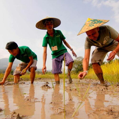 Unbekanntes Juwel am Mekong –  intensiv und aktiv von Norden nach Süden