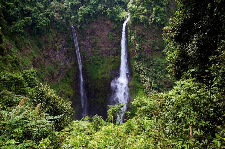 Auf dem Bolaven Plateau gehen Sie auf Kaffee- und Wasserfallwanderung