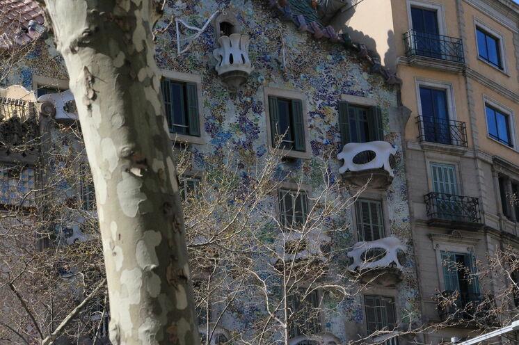 Barcelona ist keine Stadt nur für ein Kurzwochenende. Vielleicht verlängern Sie um einige Tage oder kommen wieder... Wir sind schon im März wieder hier, wenn der Marathon mit gut 18000 Läufern ruft.