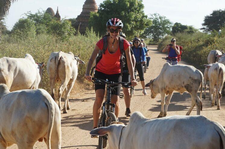 Rund um Bagan unternehmen Sie außerdem eine Fahrradtour