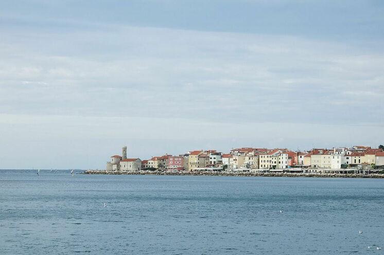 Blick auf die Küstenstadt Piran