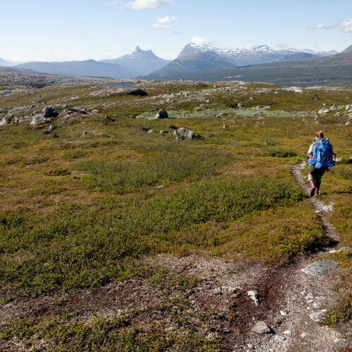 In den wilden Bergen von Schwedisch-Lappland