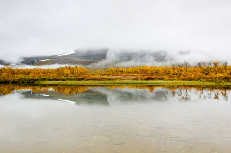 Auch das gehört zum Herbst - Frühnebel © Johannes Kormann