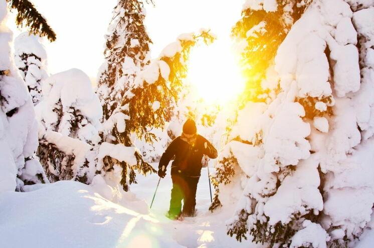 Auf Schneeschuhen durch die Winterwelt  ... © Johannes Kormann