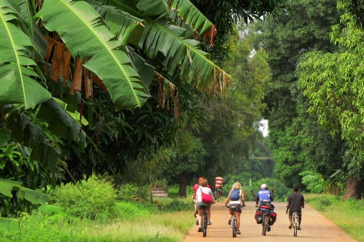 Sansibar mal anders erleben: Fahrt durch das Innere der grünen Insel
