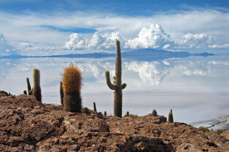 Erlebnis Salar de Uyuni: Kakteeninsel Incahuasi, Nacht im Salzhotel und Wandern zum Kraterrand des Vulkans Tunupa