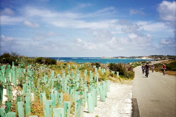Entspannter Radfahrtag auf der autofreien Insel Rottnest Island