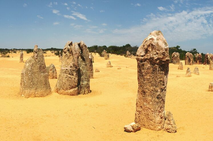 Pinnacles - bizarre Kalksteinformationen im Nambung Nationalpark